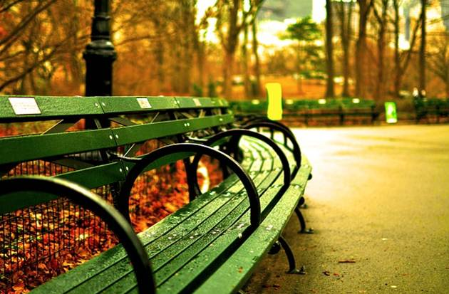 council_park_bench